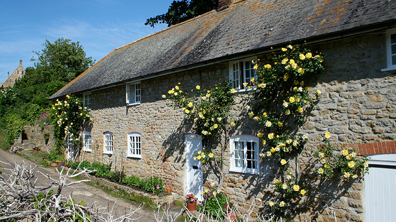 Self Catering Cottage, Abbotsbury, Dorset