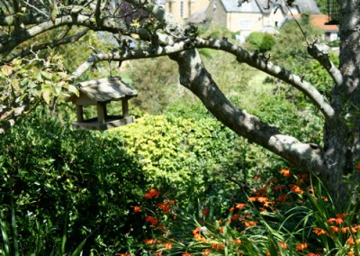 thecottage-garden-2