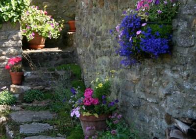 thecottage-garden-1